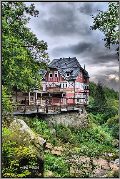 Waldgasthaus Steinerne Renne
